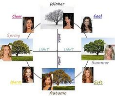 4 seasons of seasonal color analysis