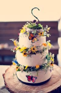 Bohemian Wedding Cake. i actually love this cake alot. we could use real wildflowers, and some of that reindeer moss, and i actually HAVE a package of these butterflies in the trunk of my car that i've never opened!