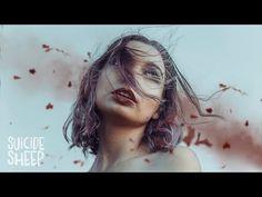 Song Lyrics - Letras Música - Tradução em Português: JT - Wasted Roses