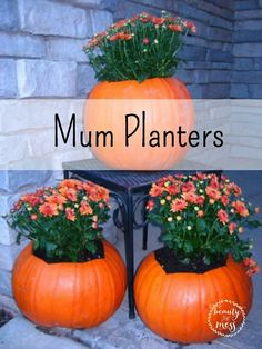 Simple decorating with pumpkins for every season of life. Two simple ways to incorporate pumpkins into your decor. Inside and out.