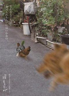 한국 남성의 제대로된 일본 펜팔&문화 이야기 :: 일본의 아이디어 돋보이는 닭꼬치(야키토리 焼き鳥) 집 광고 클라스