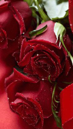 GIFS HERMOSOS: flores y hadas encontradas en la web
