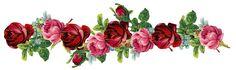 Livre do vintage digitais aumentou quadro e fronteira png - Rose frame - brinde   Meu roxo Park - printables DIY e downloads