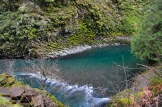 Molalla Eye on the Upper Molalla River. Swam here so many times and the water was always freeeeeeezing cold! Waterfall Project, Oregon City, Wide Angle, Geology, Great Photos, Paths, Road Trip, To Go, Hiking
