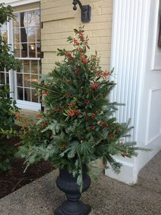 Evergreen planter. Evergreen Planters, Winter Planter, Xmas, Christmas, Backyards, Fireplaces, Outdoor Decor, Plants, Fireplace Set