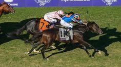 Horses You Should Know for Arlington Million Card - America's Best Racing. The Jockey Club