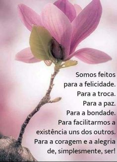 Peace Love And Understanding, Portuguese Quotes, L Quotes, Family Love, Peace And Love, Life Lessons, Prayers, Wisdom, Messages