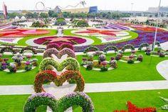 Garden Centre Dubai images