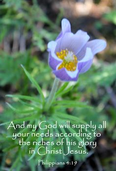And my God shall supply all your need according to His riches in glory by Christ Jesus. [Philippians 4:19]