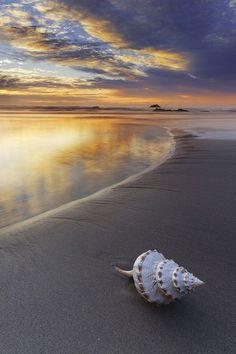 Cada dia que passa a saudade só aumenta, e você fica mais distante.