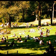 My version of Seurat's Sunday Afternoon on the Island of La Grande Jatte