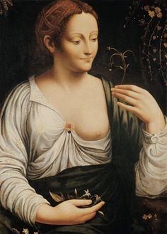 Leonardo da Vinci-Columbine #TuscanyAgriturismoGiratola