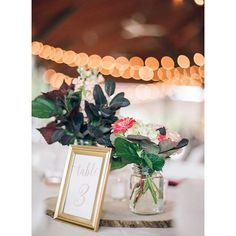 Swooning over these wedding centerpieces! - www.krystalhealyblog.com  #wedding #bride #pittsburgh #pittsburghwedding #pittsburghweddingphotographer #destinationphotographer #pghwedding #weddingday #burghbride #krystalhealyphotography #film #contax645 #portra400 #FIND #succop #succopconservancy #succopwedding (scheduled via http://www.tailwindapp.com?utm_source=pinterest&utm_medium=twpin&utm_content=post15413862&utm_campaign=scheduler_attribution)