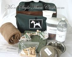I LOVE LOVE LOVE this idea! Make a travel bag or emergency kit for your dog!