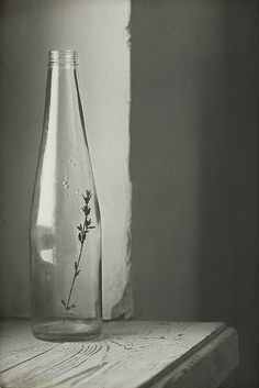 simplicity and light and shadows, roundness of bottle contrasts with angle of wall #bywstudent