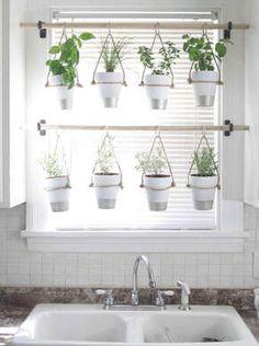 DIY Hanging Herb Garden - across a window