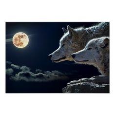 wolf moonlight night wild animals wolves poster