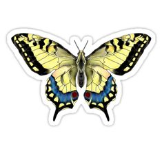 """Giant Swallowtail Butterfly"" Stickers by Scribblestudio Big And Rich, Butterfly, Stickers, Tattoos, Cage, Prints, Stuff To Buy, Accessories, Sticker"