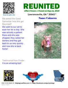 Helping Lost Pets | Dog - Pit Bull Terrier - Reunited