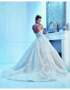 Princess ballgown wi