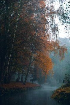 misty creek by Denny Bitte Source: dennybitte