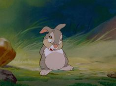 """""""Mom said if you cant say anything nice, dont say anything at all""""- Thumper"""