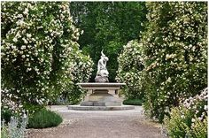white garden - Google Search