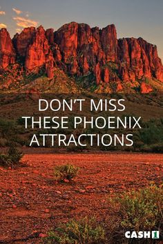 Heading to Arizona? You have to check out these Phoenix attractions. So pack your bags and you can turn your travel adventures into a lifetime of memories.