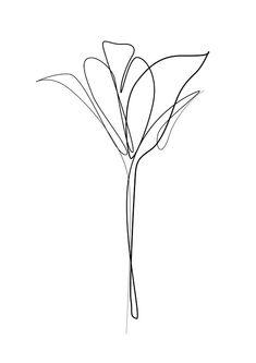 Minimal A4 Tulip Flower Art One Line Art Modern Art Black