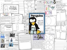 Penguins... A Non-fiction Packet! Perfect for K-1