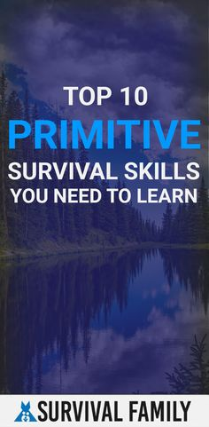 Top 10 Primitive Survival Skills You Need To Learn Homestead Survival, Survival Prepping, Survival Skills, Survival Family, Primitive Survival, Tactical Survival, Disaster Preparedness, Financial Tips, Self