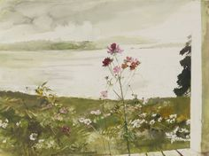 Cosmos - Andrew Wyeth 1917-2009Watercolor and pencil on paper