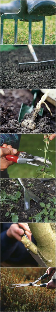 7 Garden Tools Everyone Should Own --> http://www.hgtvgardens.com/photos/gardens-photos/basic-garden-tools-everyone-should-own?soc=pinterest