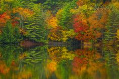 https://flic.kr/p/Q4uGAe   Visual Delights Mirrored Across Lake_720_Logo   www.kevinmcnealphotography.com/Landscapes/United-States/N...