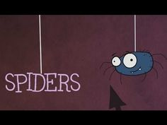 Check out this awesome spider video and more!   Mrs. Ehle's Kindergarten Connections: Spectacular Spiders!