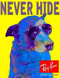 Ray Ban never hide campaign
