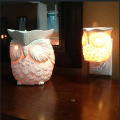#Scentsy Warmers Whoot and Whoot Plug-in   :)