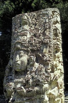 ✮ Close up of Stela H at the Mayan ruins of Copan, Honduras