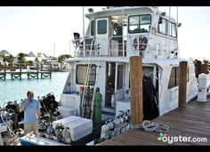 This girl would LOVE to work on a boat like this. And scuba dive all day erehday.