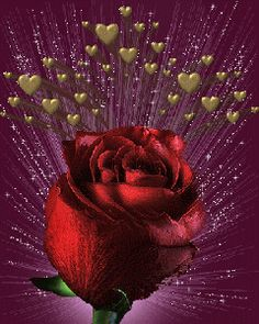 Hearts and roses . Images Lindas, Rosas Gif, Beau Gif, Flowers Gif, Beautiful Red Roses, Hearts And Roses, Glitter Graphics, Gif Pictures, Love Images