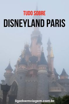Our travel goals are more likely to come true if we engage in careful planning. The tips located below will help you enjoy your trip even better. Disneyland Paris Video, Disney Em Paris, Disneyland Paris Castle, Nice Riviera, France Winter, Paris Winter, Paris Travel Guide, Paris Tips, Paris Photography