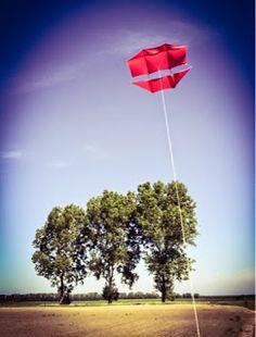 B-kites: Maxi Dopero
