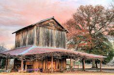 Tobacco Road nougat brown North Carolina Americana    by JCFindley, $75.00