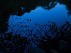 Deep Blue Afternoon #dark #grunge #photography