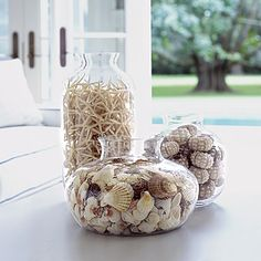 Ocean Inspired Home Decor Shell Game Authentic Ocean Elements Bring Visual Interest To
