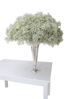 Babysbreathwedding centerpieces | Glamorous Baby's Breath Wedding Centerpiece : Wedding Flowers Gallery