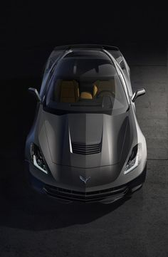 2014 Corvette Stingray. In my dreams I will drive this.