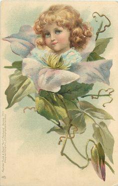 Flower Faces postcard illustrated by Frances Brundage, 1903