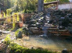 Water garden - tomgarden