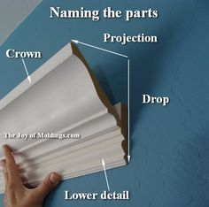 flying crown molding on wall - Google Search